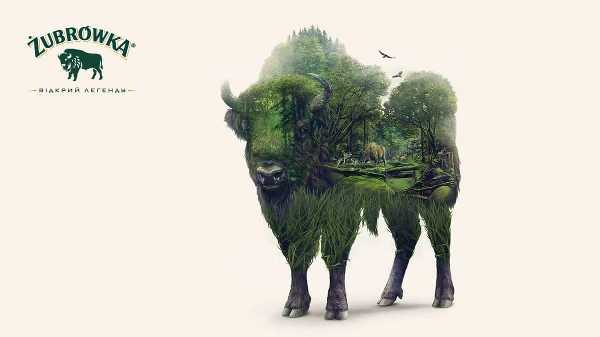 Секрети бренду Zubrowka Bison Grass
