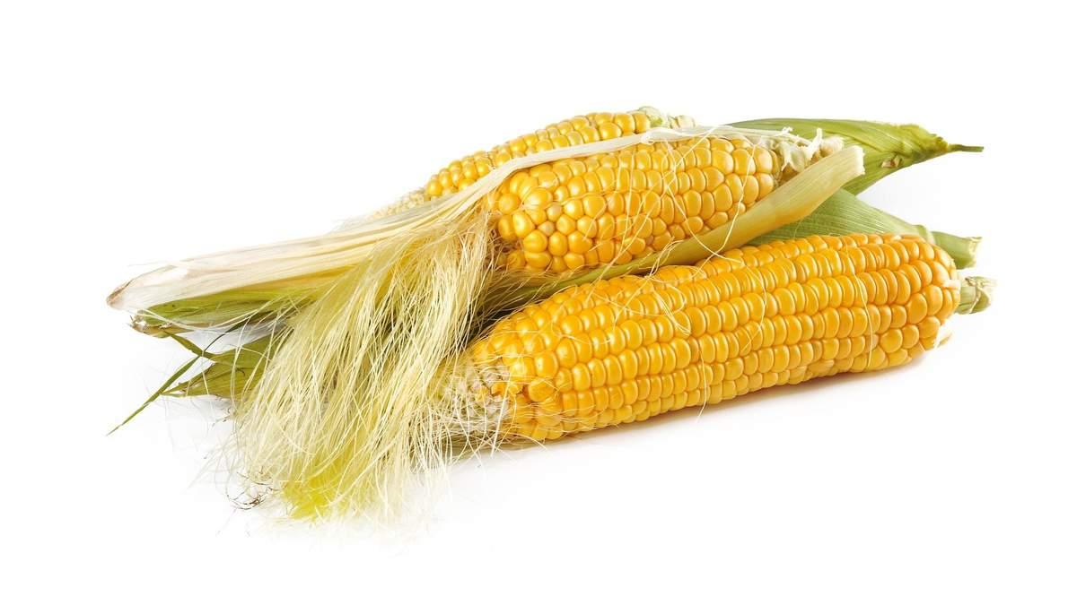 Приготування кукурудзи в мікрохвильовці: рецепт на 5 хвилин - Ідеї