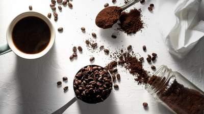 Як ростуть кава та інші продукти, які ви звикли бачити в упаковці