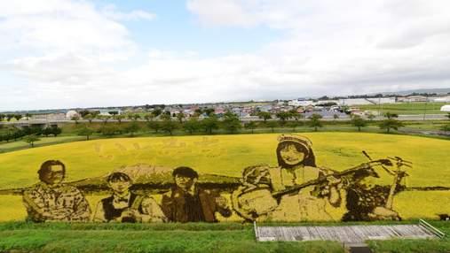 Рисовые шедевры: в японской деревне каждый год превращают поля в картины